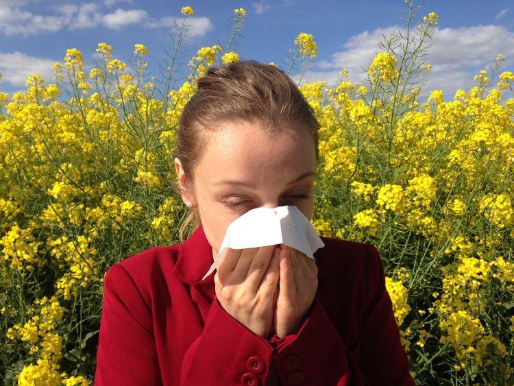 najlepsze krople na alergię